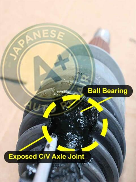 Image shows a C/V axle with exposed C/V axle joint & ball bearing - A+ Japanese Auto Repair Inc.
